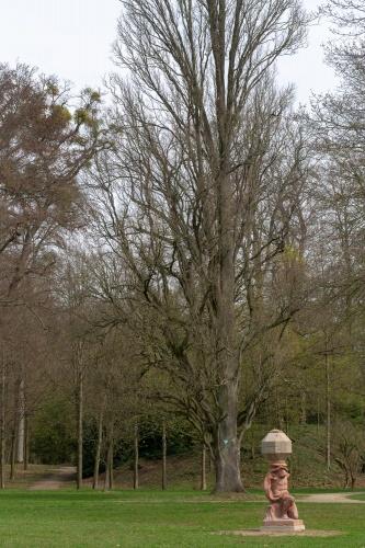 Pyramideneiche in der Ehemalige Kuranlage Wilhelmsbad