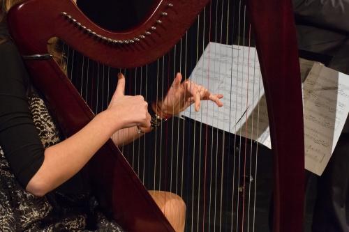 Sarah Elisabeth Burow - Harfe, Detail