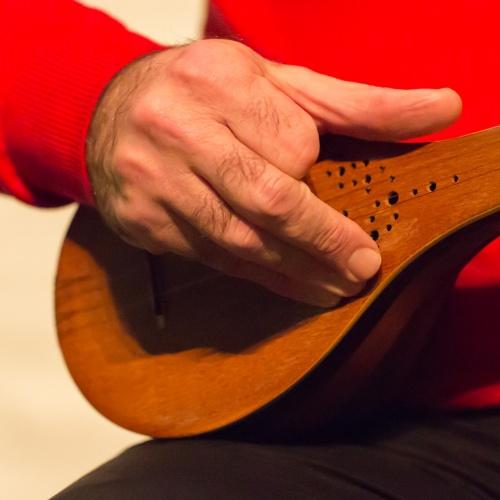 Mehdi Aslani spielt Setar - Zeigefingerarbeit