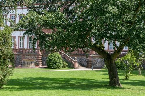 Ginkgo vor Schloss