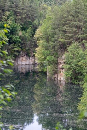 Bluetenstaub auf Oberwaldsee