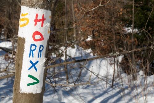 Schornecke - Winterwanderweg-3