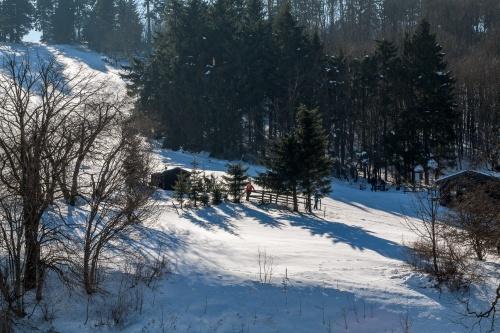 Schornecke - Winterwanderweg-8