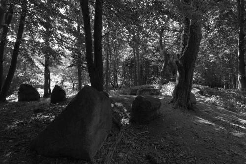 Grosssteingrab Ziegensteine-3