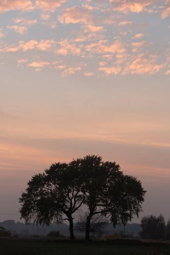 Wolken - Land 14