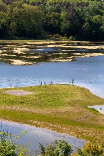 Naturschutzgebiet Gehspitzweiher