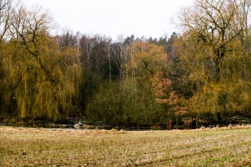 Winter im Wendland-16