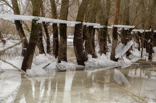 Winter im Wendland-6